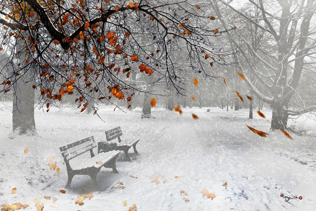 1001 bài thơ hay về mùa đông lay động hàng triệu trái tim