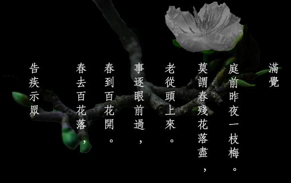 Cáo tật thị chúng (Mãn Giác thiền sư) - Tác phẩm văn học thi kệ nổi tiếng Lý Trần