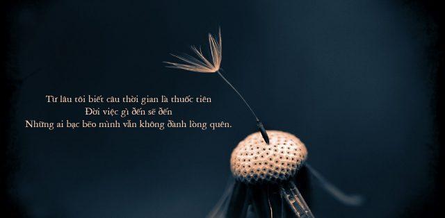 45+ bài thơ về cuộc đời bạc bẽo đau lòng, xót xa, đọc là khóc