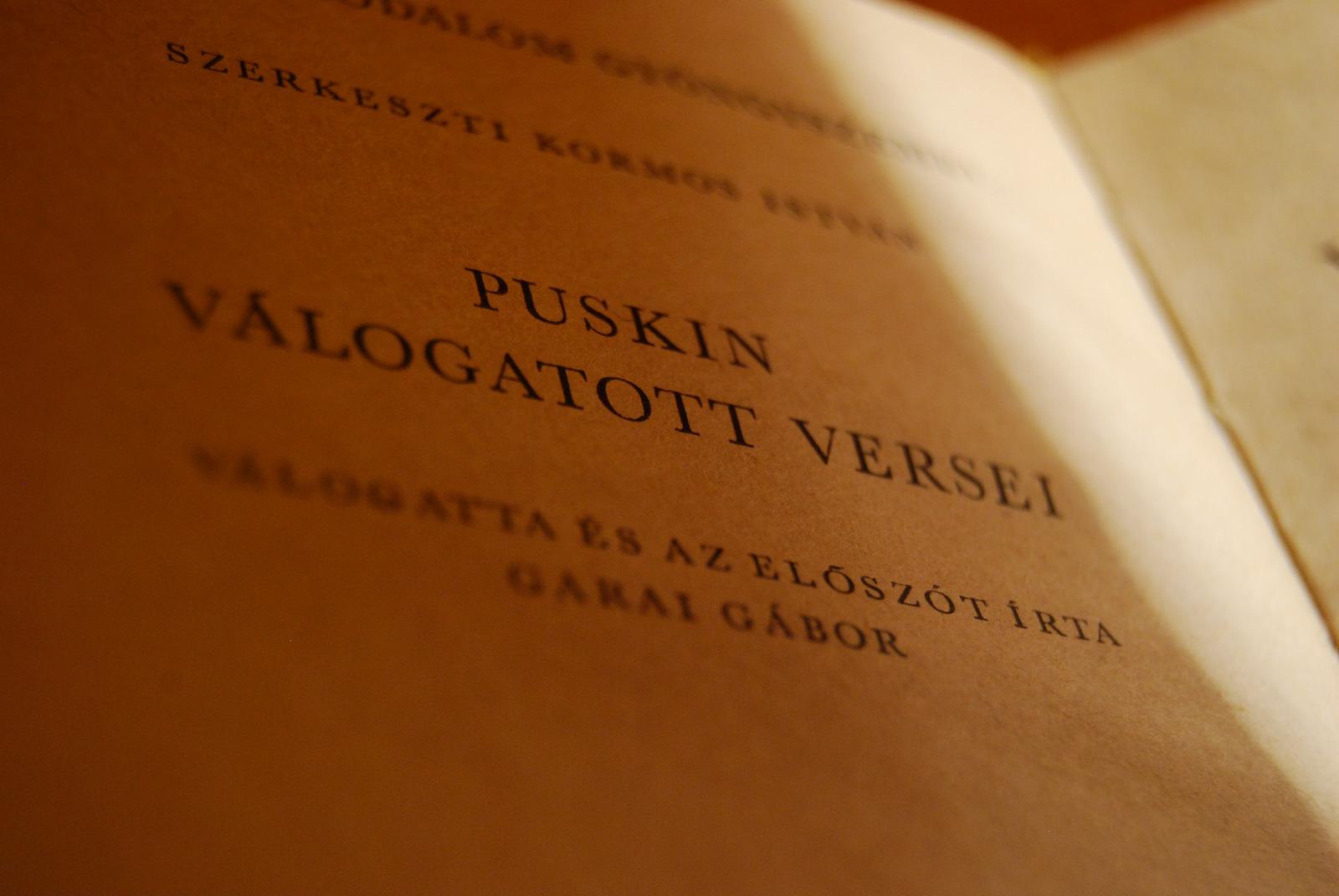 tho-tinh-puskin-4