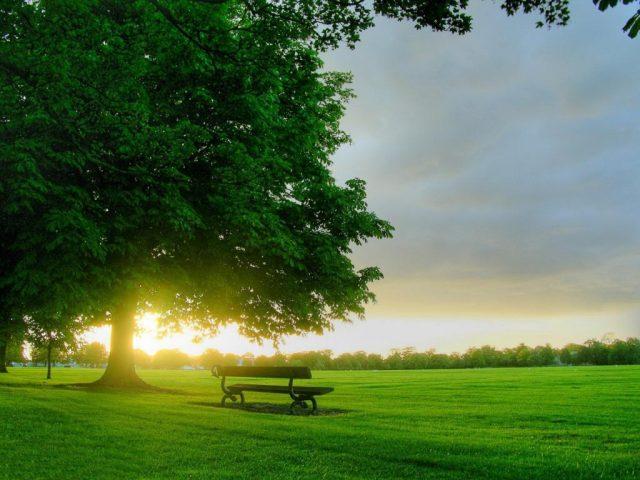 Chùm thơ viết về nắng hay, lãng mạn chất chứa đầy yêu thương