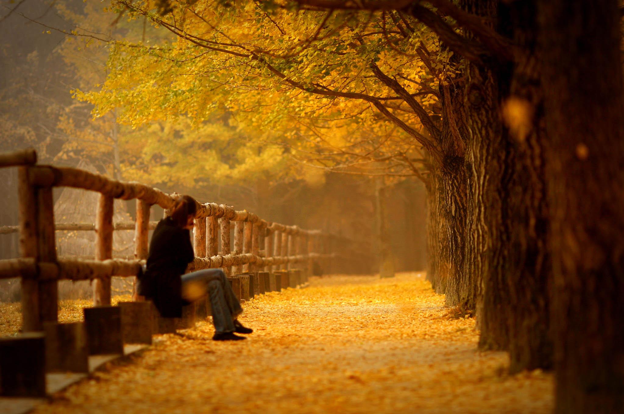 Bài thơ Mùa thu không có em